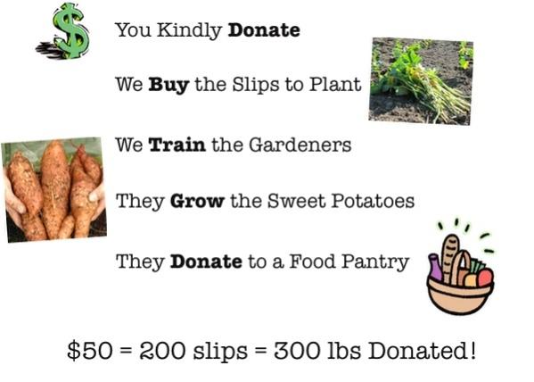 mspp_donate