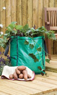 http://www.thompson-morgan.com/how-to-grow-sweet-potatoes